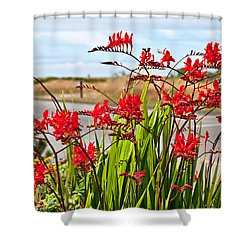 Red Flowers Crocosmia Lucifer Montbretia Plant Art Prints Shower Curtain
