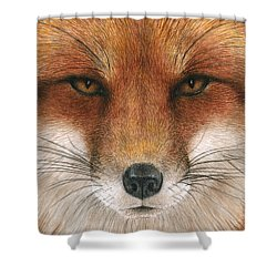 Red Fox Gaze Shower Curtain