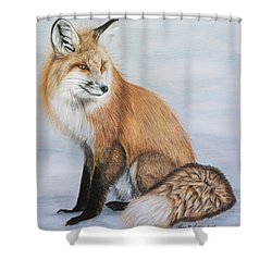 Red Fox Shower Curtain by Lena Auxier