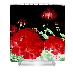 Red Geraniums Shower Curtain by Will Borden