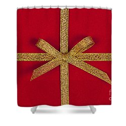 Red Gift With Gold Ribbon Shower Curtain by Elena Elisseeva