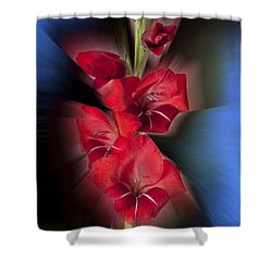 Shower Curtain featuring the photograph Red Gladiola by Mark Greenberg