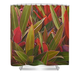Red Green And Purple Shower Curtain