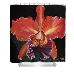 Red Hawaiian Orchid Shower Curtain