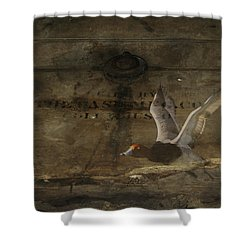 Red Head Duck Old Box Shower Curtain