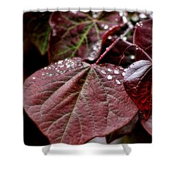 Shower Curtain featuring the photograph Red Heart by Peggy Hughes