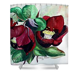 Red Helleborous Shower Curtain by Karin  Dawn Kelshall- Best