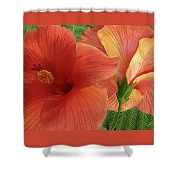 Shower Curtain featuring the photograph Red Hibiscus by Ben and Raisa Gertsberg