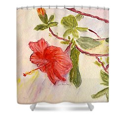 Shower Curtain featuring the painting Red Hibiscus by Linda Feinberg