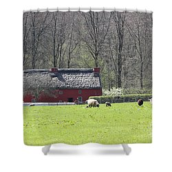 Red House Shower Curtain by Vicki Spindler