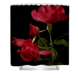 Shower Curtain featuring the photograph Red Is For Passion by Lucinda Walter