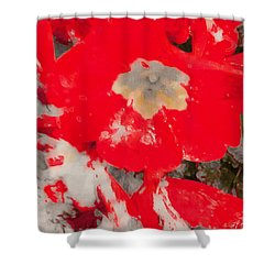 Red Lacquered Primroses Shower Curtain