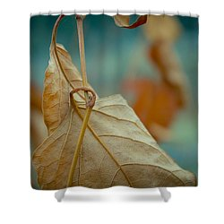 Red Leaf Close-up Shower Curtain
