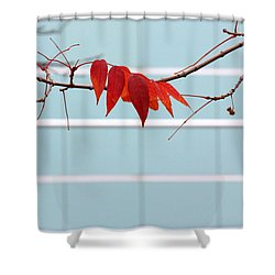 Red Leaves Shower Curtain