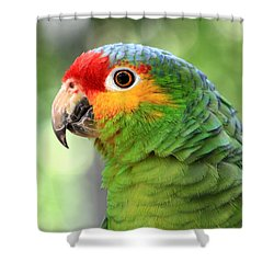 Red-lored Amazon Parrot Shower Curtain by Teresa Zieba