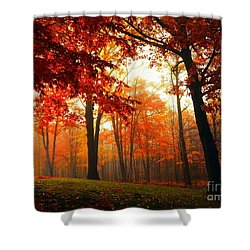Red Maple Forest Shower Curtain by Terri Gostola