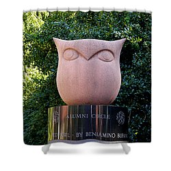 Red Owl At Temple Shower Curtain by Richard Reeve
