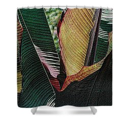 Shower Curtain featuring the photograph Red Palm Leaves by Nadalyn Larsen