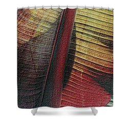 Shower Curtain featuring the photograph Red Palm by Nadalyn Larsen