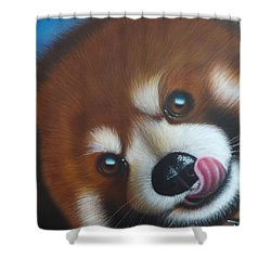 Red Panda Shower Curtain by Darren Robinson
