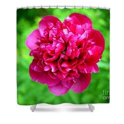 Red Peony Flower Shower Curtain by Edward Fielding