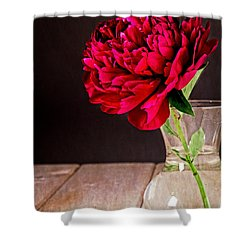 Red Peony Flower Vase Shower Curtain by Edward Fielding