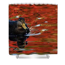 Red Pond Shower Curtain by Karol Livote