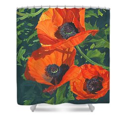 Red Poppies Three Shower Curtain by Lynne Reichhart