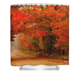 Red Red Autumn Shower Curtain by Terri Gostola