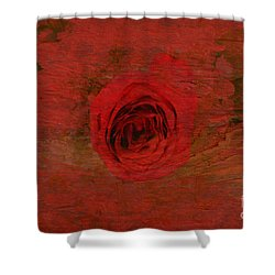 Red Red Rose Shower Curtain by Kathleen Struckle