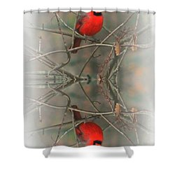 Red Reflection Shower Curtain by Barbara S Nickerson