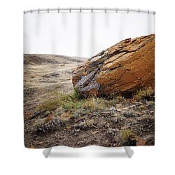 Red Rock Coulee IIi Shower Curtain