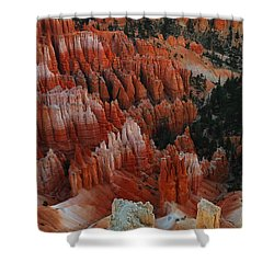 Red Rock Shower Curtain by Jeff Swan