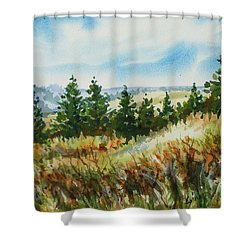 Red Rock View Road Shower Curtain