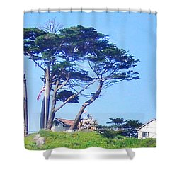 Red Roofs Shower Curtain by Marilyn Diaz