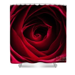 Red Rose Square Shower Curtain