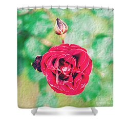 Red Rose Shower Curtain by Yew Kwang