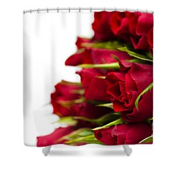 Red Roses Shower Curtain by Anne Gilbert