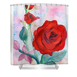 Red Roses Shower Curtain by C Sitton