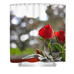 Red Roses Shower Curtain by Daniel Precht