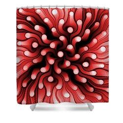Red Sea Anemone Shower Curtain by Anastasiya Malakhova