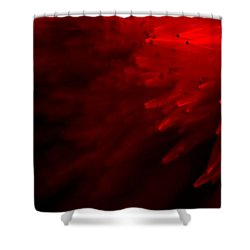 Red Skies Shower Curtain by Dazzle Zazz