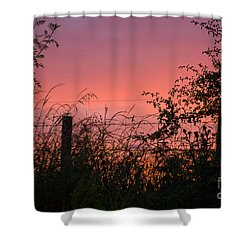 Red Sky At Night Shower Curtain by Liz  Alderdice