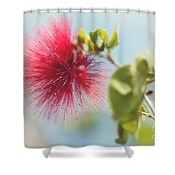 Red Sparkle Shower Curtain