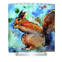 Red Squirrel  Shower Curtain by Trudi Doyle