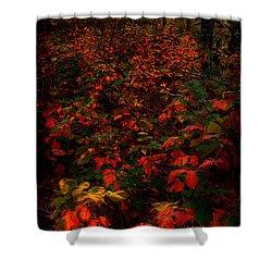 Red Sumac Shower Curtain