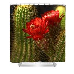 Red Torch II  Shower Curtain by Saija  Lehtonen