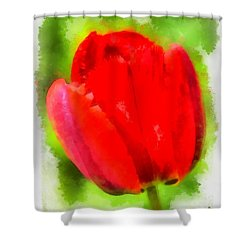 Red Tulip Aquarell Shower Curtain by Matthias Hauser