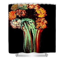 Red Vase Revisited Shower Curtain