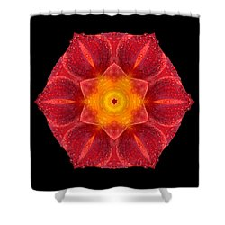 Red Wet Lily Flower Mandala Shower Curtain by David J Bookbinder